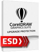 CorelDRAW Graphics Suite Upgrade Protection (12 miesięcy)