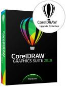 CorelDRAW Graphics Suite 2019 PL Box Upgrade (1 stanowisko) + Upgrade Protection (12 miesięcy)
