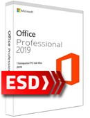 Office 2019 Professional PL ESD