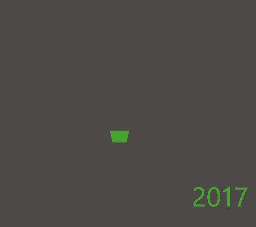 Corel Draw Graphics Suite 2017